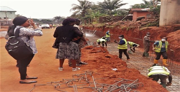 Delta State-Nigeria Erosion and Watershed Management Project (DTS-NEWMAP)